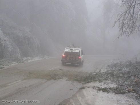 Екипи на Пътно управление разчистват пътя Белоградчик – Орешец от паднали дървета
