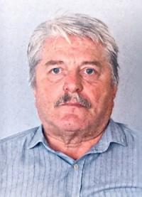 Георги Николов Големшински