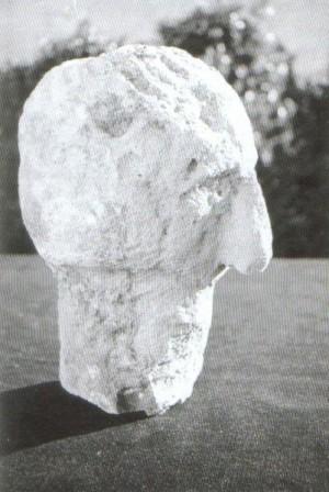 Главата от Баба Вида в профил