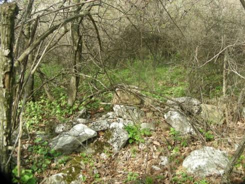 Могила на погребани войници от 3 пехотен бдински полк