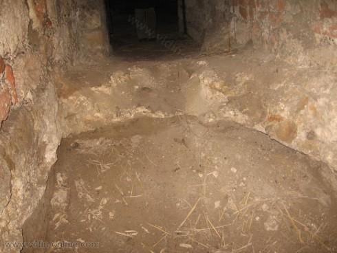 Замък Баба Вида