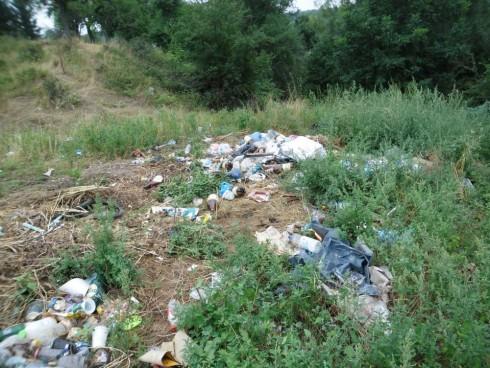 Жители на село Рабиша организираха почистване на езеро Рабиша