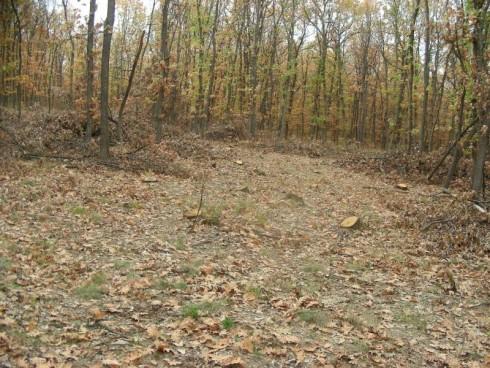 70% от горските пътища в Белоградчишко са пострадали от дъждовете, дърводобивът е спрян