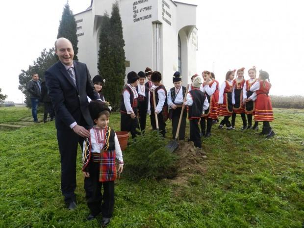 Областният управител Момчил Станков и видинският първокласник Момчил посадиха заедно коледно дръвче