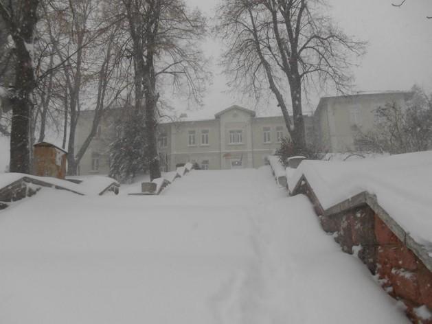 50 см достигна снежната покривка във Видинска област