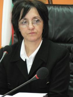Заместник – областният управител Елка Георгиева проведе среща на общините с ръководителите на социалните, просветните и здравните институции в област Видин