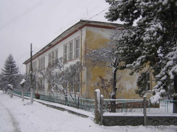 Галина Вакарицова, кмет на село Раброво: Чакали и лисици слизат през зимата в селото