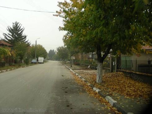 Доброволци се включват в почистването на село Антимово