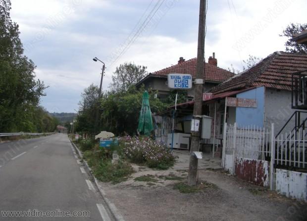 Все още не са взети необходимите мерки за борбата с комарите във видинското село Ботево