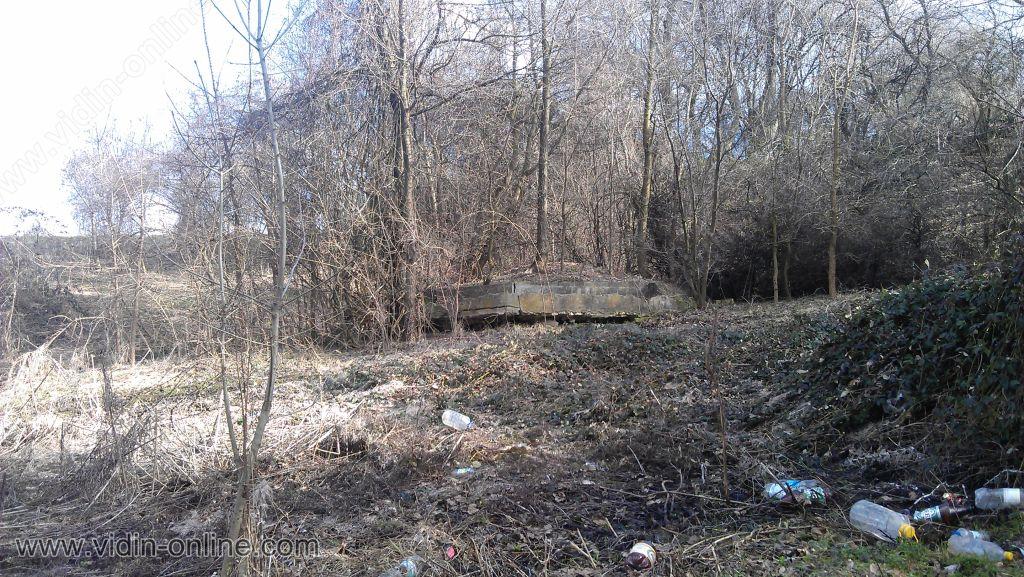Денчо Рангелов, кмет: След протестите спря изсичането на гората около село Бранковци