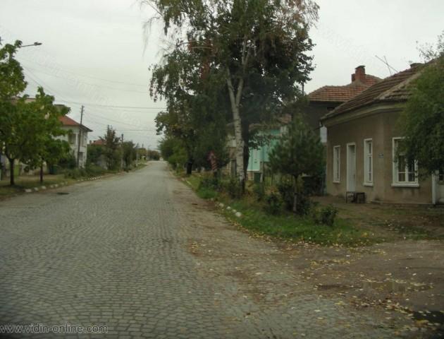 Първите щъркели се завърнаха в Дунавци