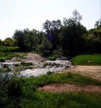 река арчар край Държаница