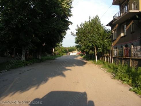 Унищожена на места е реколтата от лозята в село Гъмзово след дъждовете