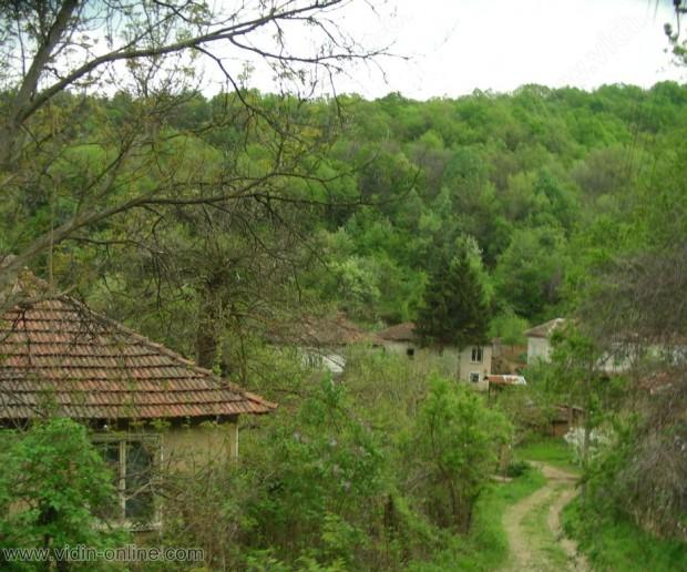 Само две регистрации за постоянен адрес за тази година има в димовските села Върбовчец, Фалковец и Яньовец