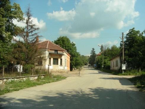 Порове и белки превзеха село Киреево