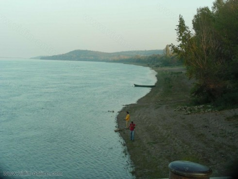 Жители на Ново село почистиха крайбрежната ивица на Дунав