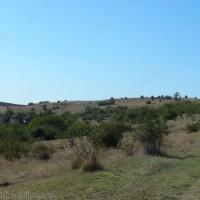 връх Локвата се намира до село Плакудер
