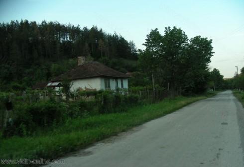 Белки се заселиха в необитаемите къщи в село Протопопинци