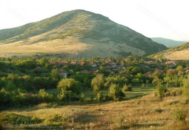 Роми, добивали дърва години наред в общинската гора на Чупрене с коне, заминаха за Германия