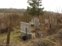 Гробищата в село Шишенци