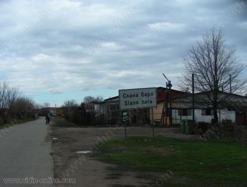 Младежите от Слана бара украсиха коледната елха в центъра на селото
