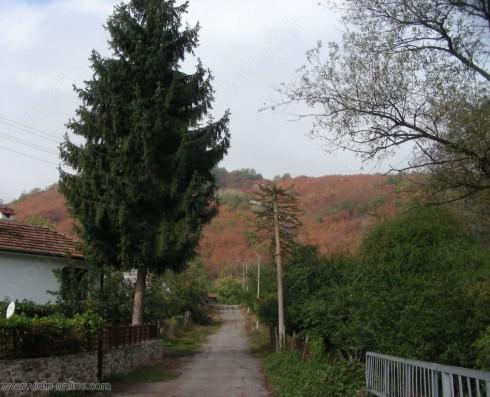 Село Стакевци се е подготвило за зимата още от месец oктомври