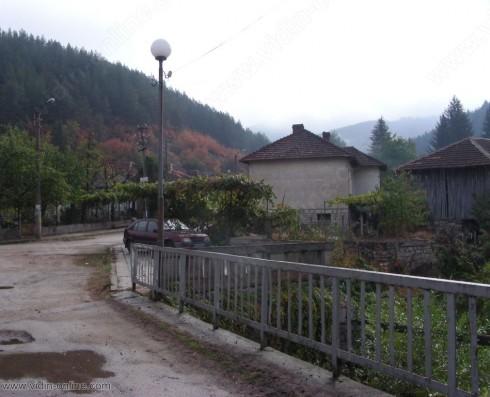 Лисици и белки все по-често се срещат в белоградчишкото село Стакевци