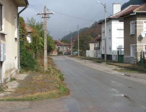 Нашествие от смокове и водни змии има в белоградчишкото село Стакевци