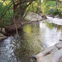 село Вещица река