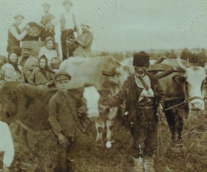 Гроздобер в село Големаново 26 септември 1921г