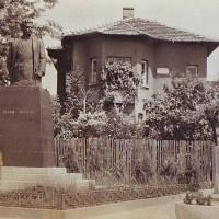 Паметник и къща музей на Боян Чонос във Видин