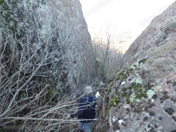 Улей в скалата