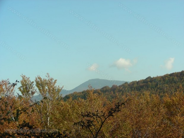 връх Бовче било