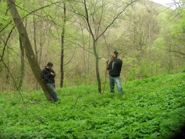 Кратка почивка в гората