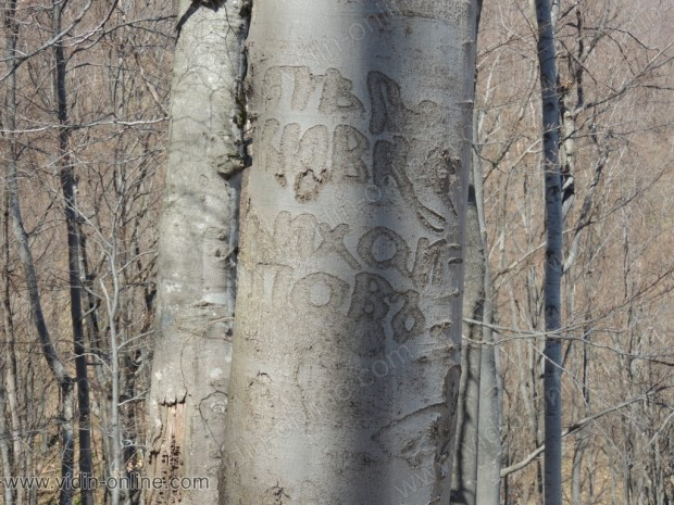 Надпис на дърво