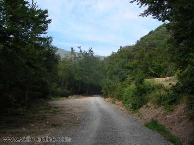 Път към връх Миджур