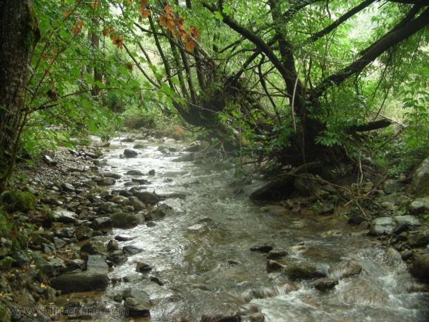 река чупренска