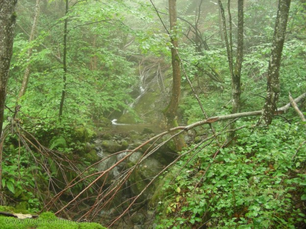 Водопад на река чупренска
