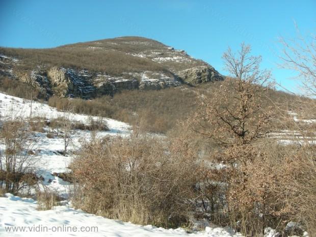 връх Ведерник