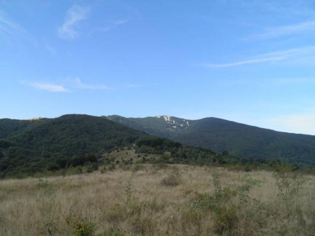 Мечки се забелязват на хранилките в Чупренския балкан от няколко години