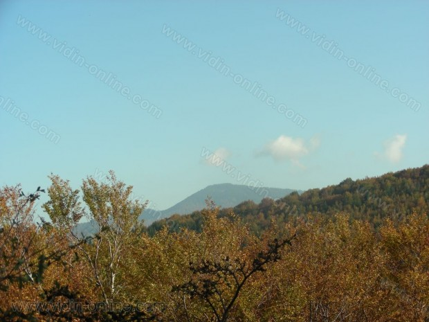 връх Берчина чука