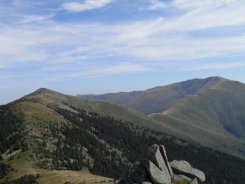 Ловците в Чупрене очакват след 3 години да се възстанови популацията на дивите кози в планината