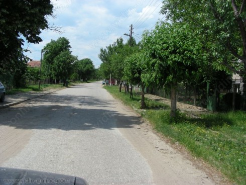 По 1 тон грозде от декар очакват във видинското село Бела Рада