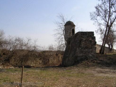 """Невен Илиев: Стените на видинската крепостна система """"Калето"""" са обрасли с дървета и се рушат"""