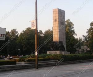 град Видин