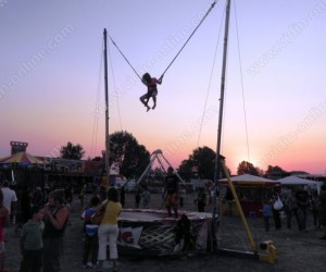 Видински панаир 2011