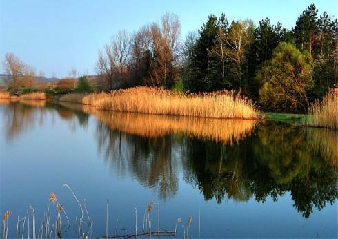 Слаб е притокът на вода към язовирите в Северозападна България