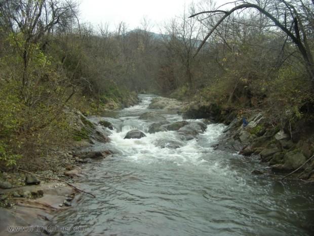 Водите на река Салаш при село Вещица са в добро състояние, сочат резултати от повторните проби