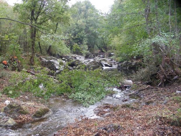 Коритото на река Стакевска, която преминава край белоградчишките села Долни и Горни Чифлик, е почистено