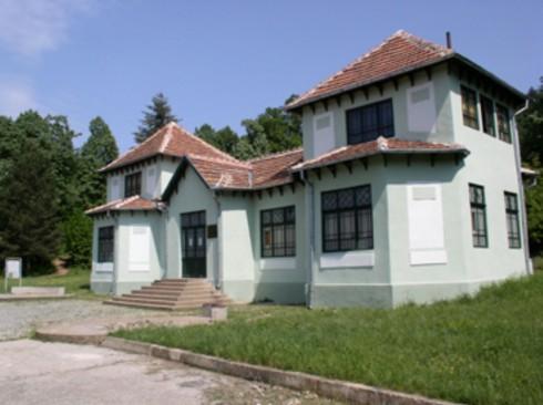 Над 3 000 експоната има в Природонаучния музей в Белоградчик